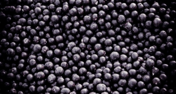 Are Acai Berries Healthy?