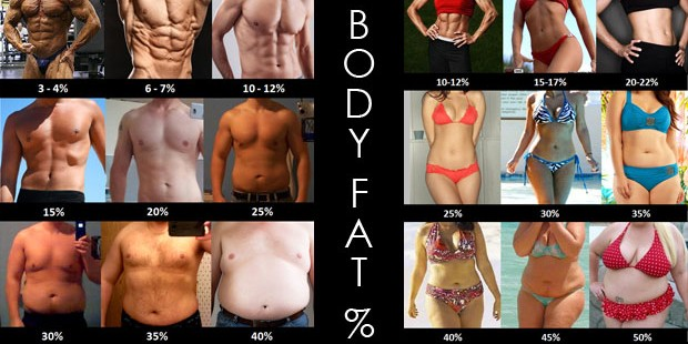 body-fat-percentage-examples-comparison
