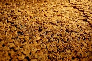 Cinnamon has some good health benefits