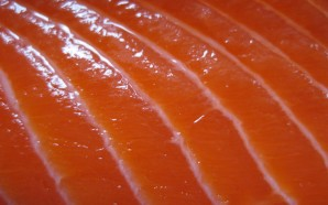GNLD's Salmon Oil plus – 8 Forms of Omega-3?